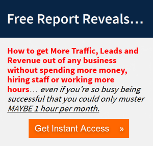 How to get More Traffic, Leads and Revenue out of any business without spending more money, hiring staff or working more hours